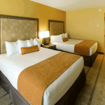 Our Guest Rooms 12