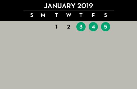 January Polar 2019