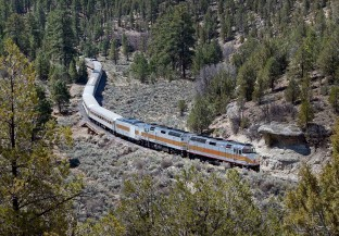 Train Rates